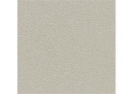 Forbo Linoleum bulletin board 2206 Oyster shell
