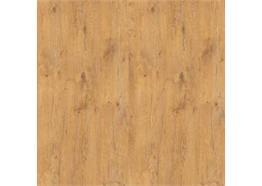 Braun Colibri832 Lancelot Oak R20027